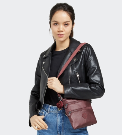 2 for $50 Mini Bags @ Kipling